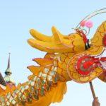 Drachenbootfestival am Pfaffenteich durchbricht Schallmauer von 100 Teams Trend beim Festival hält über Jahre an
