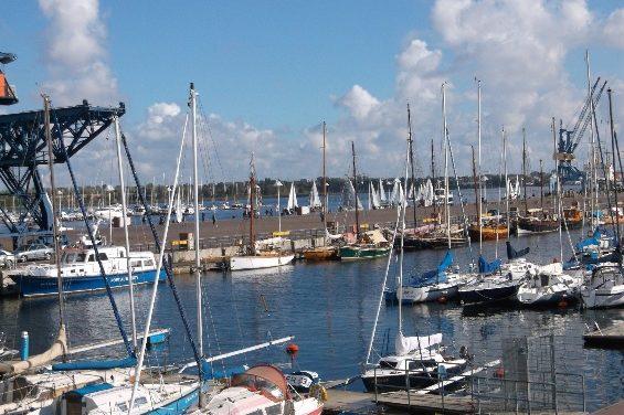 Hanse Sail-Fans sind wetterfest