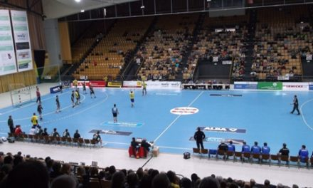 Handball-Stiere mit umkämpften Auswärtserfolg