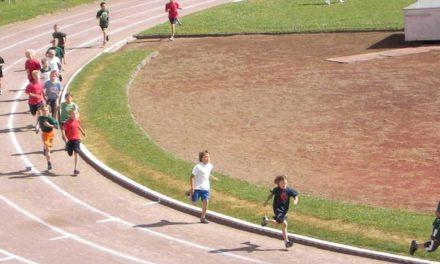 """""""Auf stabilen Beinen…"""": Die Leichtathletik in M-V im Fokus"""