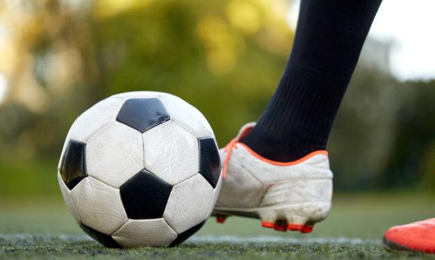 Der Ballsport: Zwischen Ligabetrieb mit M-V und WM mit M-V