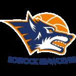 Rostock Seawolves Basketball