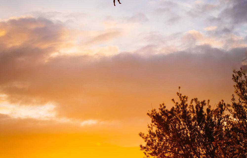 Mit dem Fallschirm sportlich unterwegs