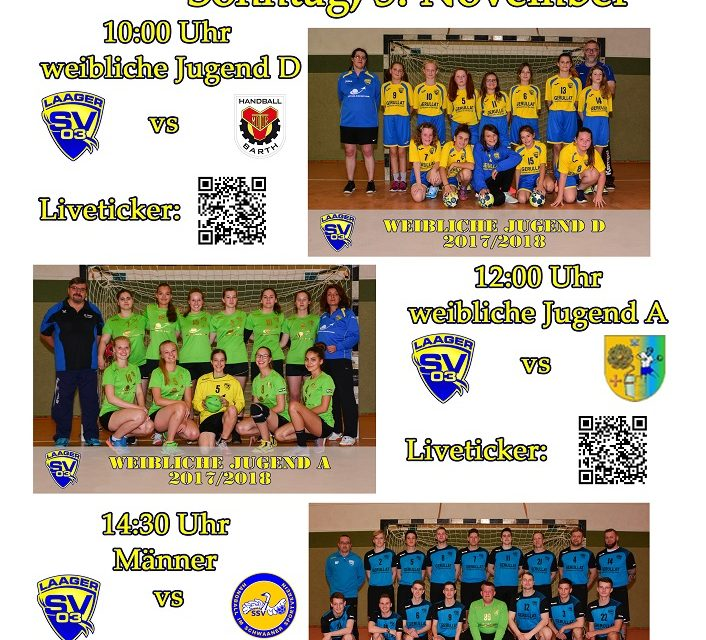 Handball-Sonntag in Laage