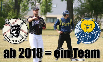 Rostocker Baseball-Teams fusionieren