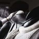 Hallenlandesmeister der Dressur mit sportlichen, züchterischen und familiären Highlights