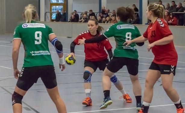 Im Winter ebenfalls gefordert: Die Ballsport-Teams aus M-V