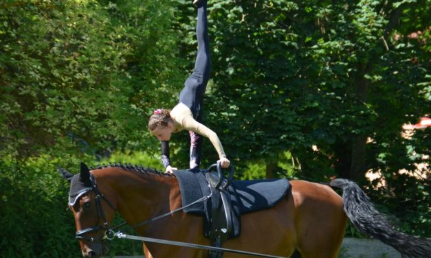 """Vielfältiges Rahmenprogramm bei """"Pferd + Hund – Turnier Mühlengeez"""""""