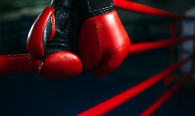 AGON Box-Gala: Zeuge, Culcay und Brähmer boxen in Schwerin
