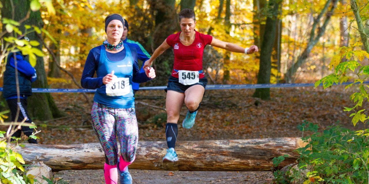 Crosslauf-Landesmeisterschaften im Laager Stadtwald