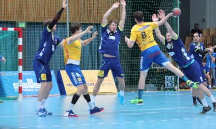 Stiere gewinnen gegen DHK Flensborg mit 39:34
