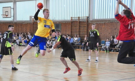Den Handballstieren ein respektables Ergebnis abgerungen