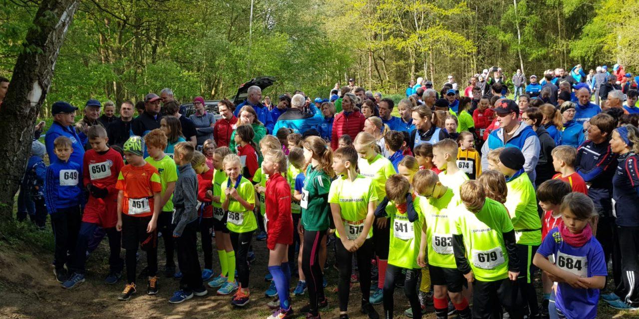 17. EURWASSER-Waldlauf in Laage – toller Laufsport für alle