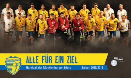 Werbung vom Feinsten für den Handball