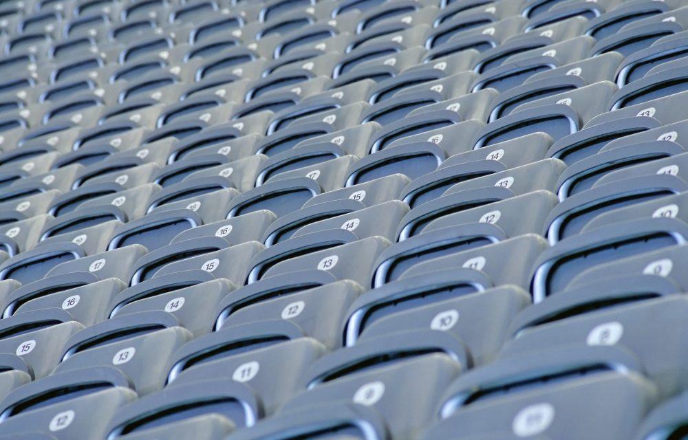 Jungstiere wollen in die Bundesliga