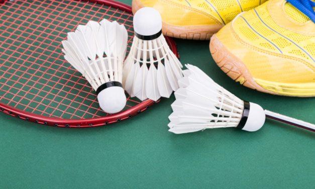 Badmintonspektakel zum Peenefest