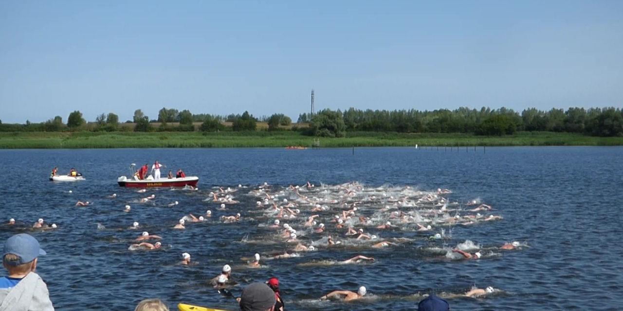 18. Warnowschwimmen – Schwimmspaß im Rostocker Stadthafen