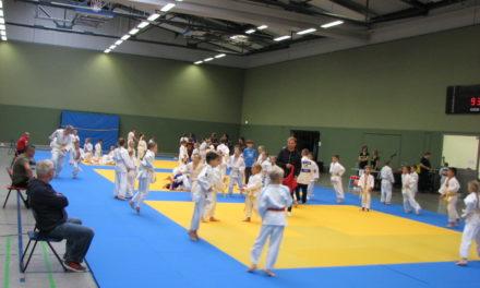 Neubrandenburg Open: Debüt gemeistert