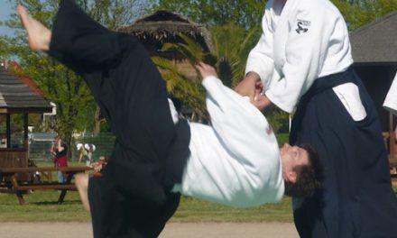 Aikido, was ist das?