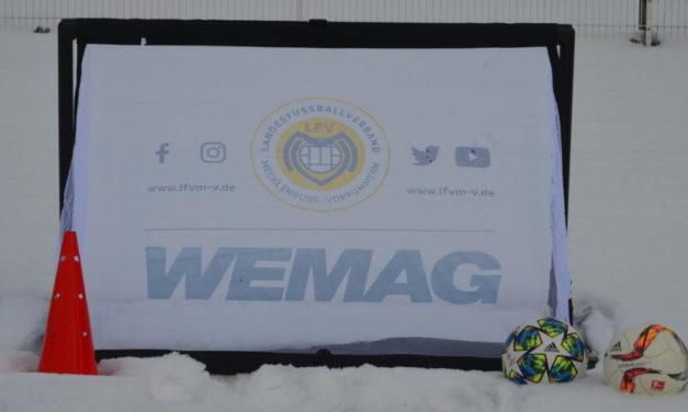 LFV und WEMAG unterstützen den Kinderfußball in MV mit Minitoren