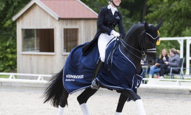 Pferdefestival Redefin darf stattfinden – Dressur und Springen pur