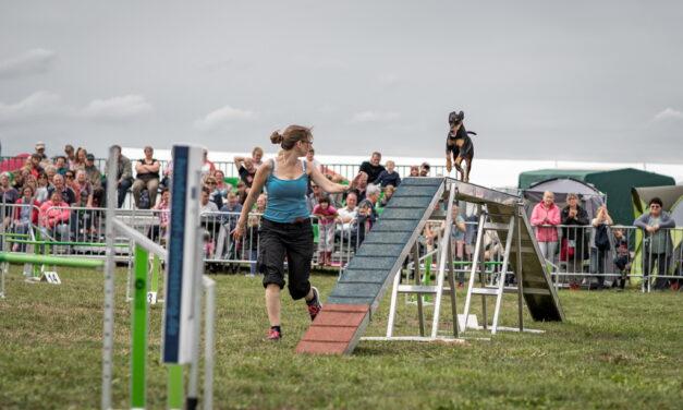 Kann stattfinden: 30. Reit- und Hundesportturnier in Mühlengeez